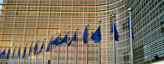 Building with EU flags